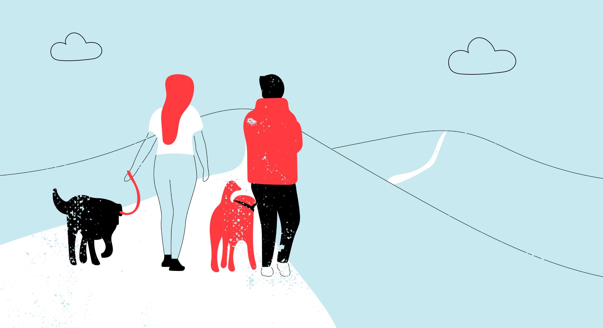 dog friendly holiday destinations